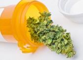 informazioni su cannabis ad uso medico