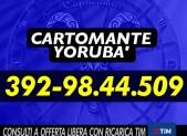 cartomante-yoruba-tim-973