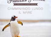 cover-FRANCESCO-PELLICINI-Camminando_lungo_il_mare-big-e1530283689237