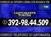 cartomante-yoruba-tim-1136