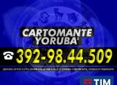 cartomante-yoruba-tim-1148