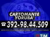 cartomante-yoruba-tim-1158