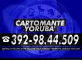 cartomante-yoruba-tim-1177