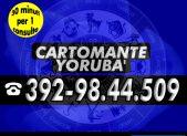 cartomante-yoruba-tim-1193