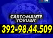cartomante-yoruba-tim-1077