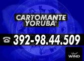 cartomante-yoruba-wind101