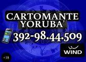 cartomante-yoruba-wind110-640px