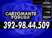 cartomante-yoruba-wind158