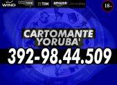 cartomante-yoruba-wind159