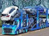 carico-trasporto-bisarca