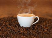 cialde-caffè-compatibili