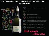 FPWineGroup_Vini&Consumi Awards
