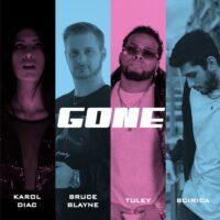 Cover Art - Gone