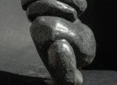 la nervosa - Cecilia Martin Birsa - Mostra
